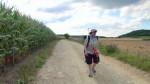 Weg von Taupadel nach Nausitz